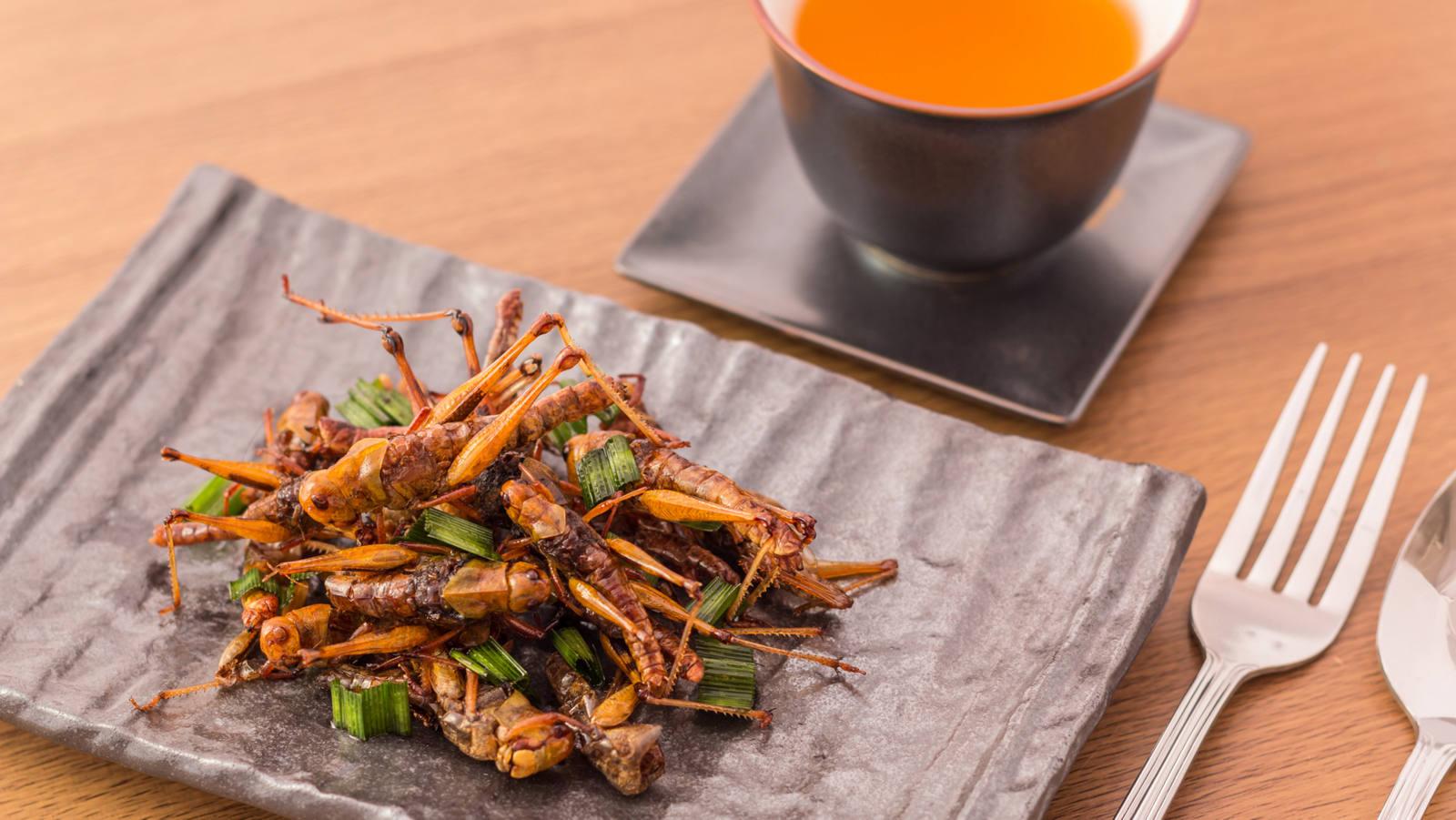 Insekten essen: Was Mehlwurm & Co für die Gesundheit bieten