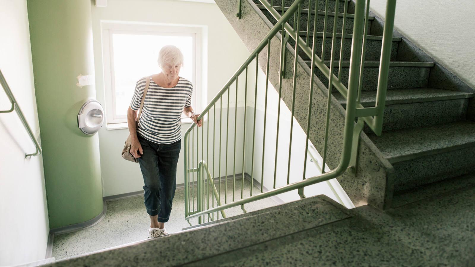 Osteoporose: Ursachen poröser Knochen Vorbeugung und Therapie